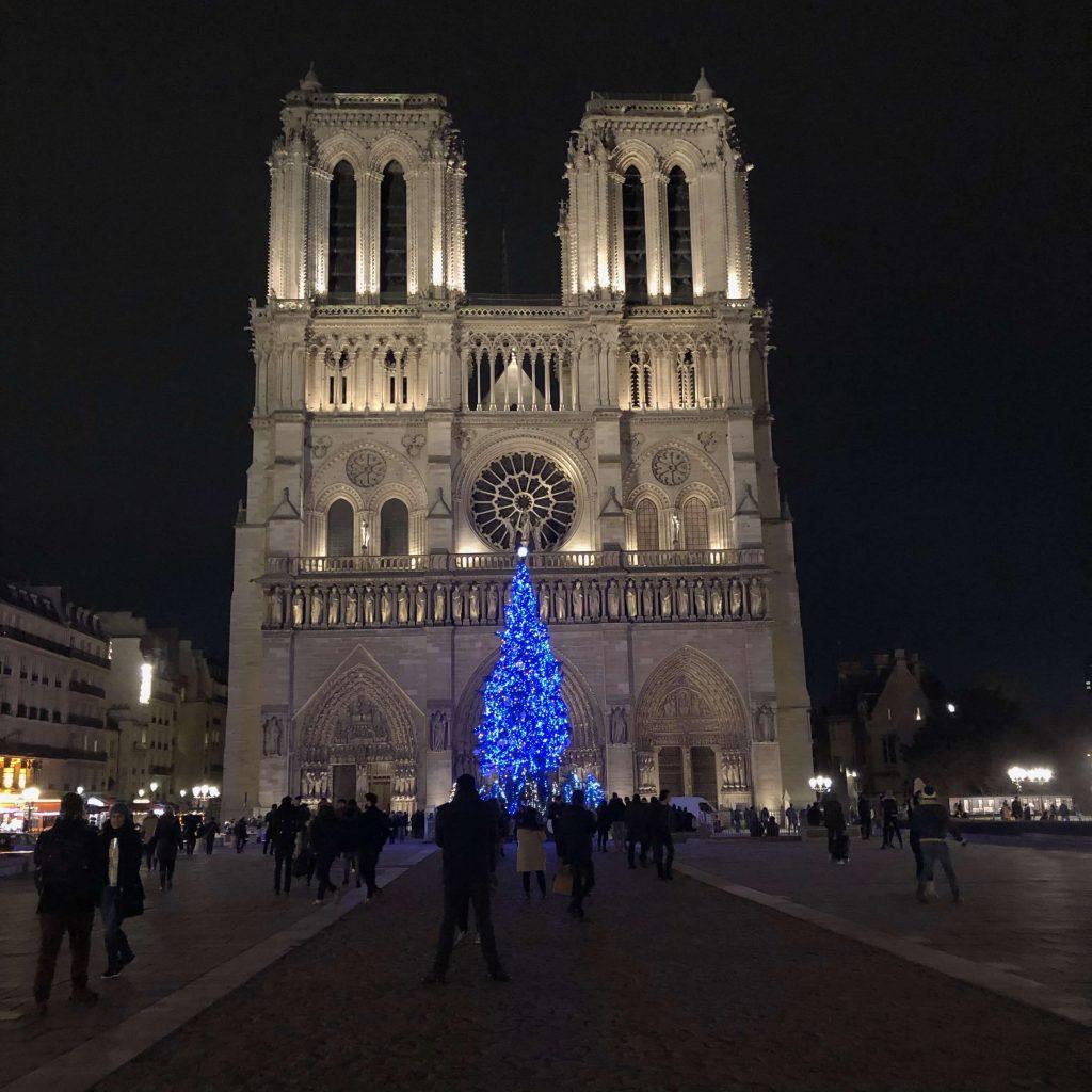Notre dame at Night paris