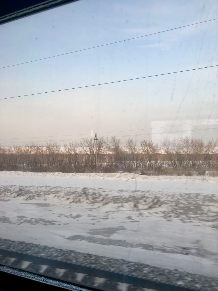 A view of the snowy Siberian Tundra from inside a moving train  Exactly What to Expect from the Trans Siberian Railway www.thedancingcircustraveller.com